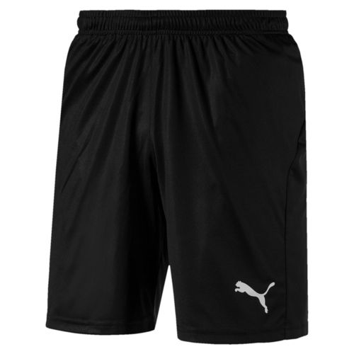 Puma Fussball Short 703436 03